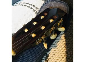 Hernandez Guitars cg-510
