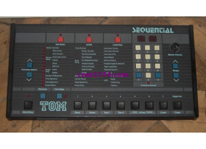 Sequential Circuits TOM (59178)