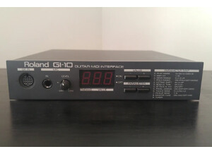 Roland GI-10