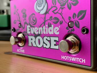 Eventide Rose : EventideRose - 4