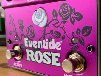 Eventide Rose : EventideRose - 5