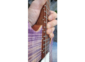 Hufschmid Guitars Tantalum model (9173)