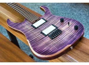 Hufschmid Guitars Tantalum model (92988)