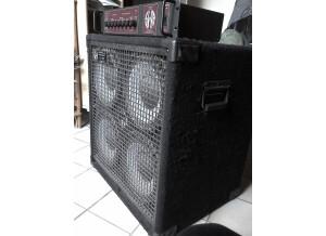 SWR Bass 350