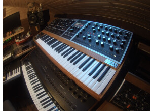 Moog Music Moog One 8 (99517)