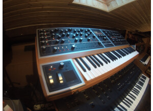 Moog Music Moog One 8 (36639)