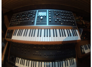 Moog Music Moog One 8 (61311)
