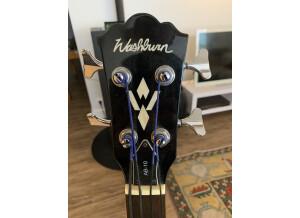Washburn AB10