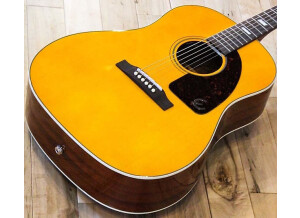 Epiphone Inspired by 1964 Texan