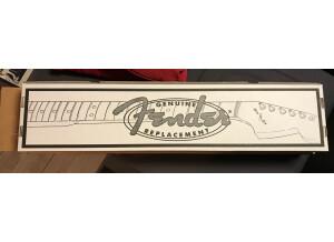 Fender MG69-65