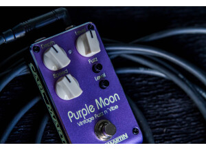 Carl Martin Purple Moon (2019)