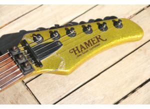 Hamer Steve Stevens