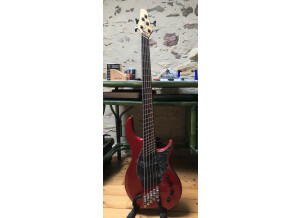 Dingwall Combustion 5 Rosewood
