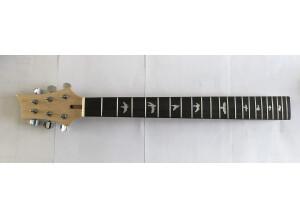MJT Corps Stratocaster