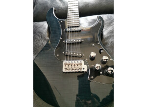 Line 6 Variax Standard Limited Edition Onyx