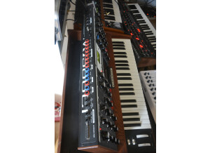 Moog Music Minimoog Voyager Performer Edition (54098)