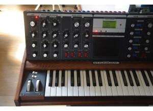 Moog Music Minimoog Voyager Performer Edition (59018)
