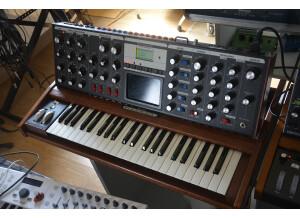 Moog Music Minimoog Voyager Performer Edition (34133)