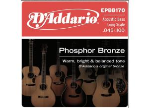 D'Addario Phosphor Bronze Wound Acoustic Bass (1161)