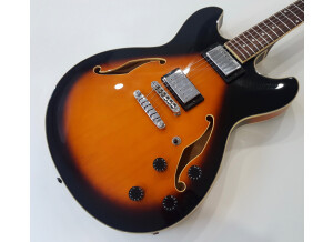 Ibanez AS73 (84308)