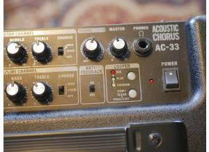 Roland AC-33 (96239)
