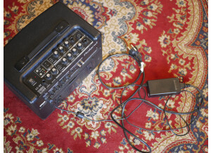 Roland AC-33 (78698)