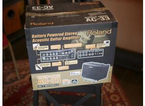 Roland AC-33 (9663)