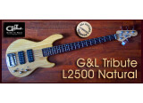 G&L Tribute L-2500