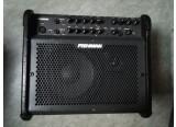 Vends Ampli acoustique FISHMAN Loudbox 100