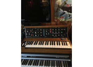 Moog Music Minimoog Model D (2016) (54852)