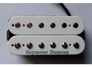 Seymour Duncan TBPG-1 Pearly Gates