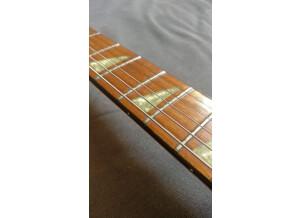 Rickenbacker 620 (71465)