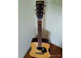 Guitare Folk Dreadnought KISO SUZUKI W150
