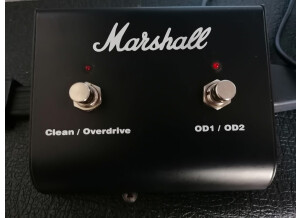 Marshall VS100RH