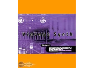 Roland SR-JV80-04 Vintage Synthesizer