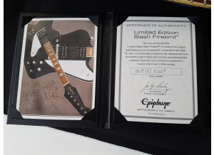 Epiphone Limited Edition Slash Firebird
