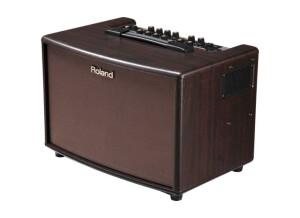 Roland AC-33 (42355)