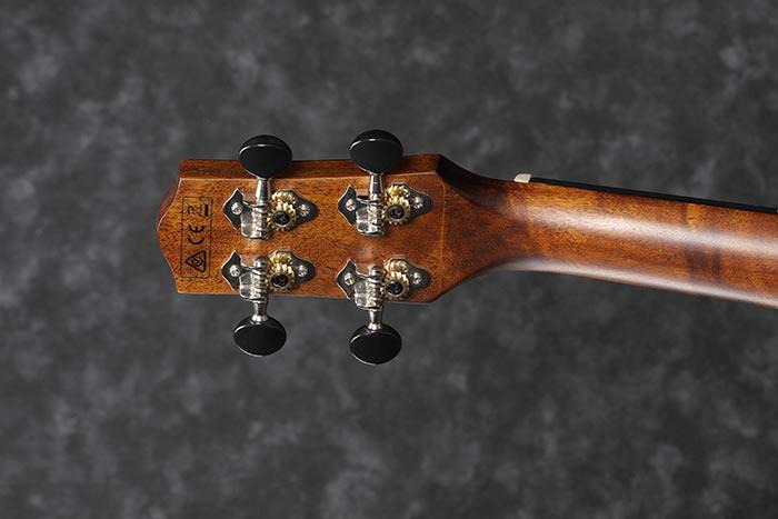 ukuleleibnanez