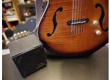 Guitar Sound Systems JAZZ CAT  GSS 05G200SJC