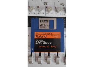 Roland W-30