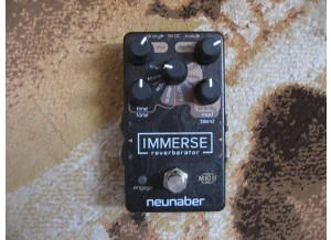 Neunaber Technology Immerse Reverberator MKII (39097)
