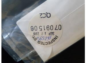 Rickenbacker 620 (99048)