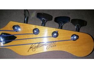 Gibson SG Standard Bass