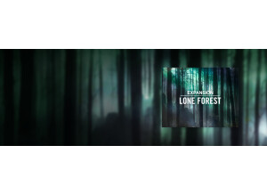 Native Instruments Lone Forest