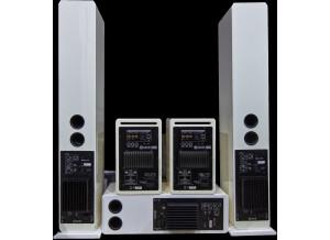 ADAM Audio ARTist 6