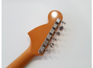 Fender MG65