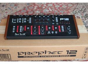 Dave Smith Instruments Prophet 12 Module
