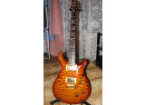 paul reed smith 20th anniversary artist package edition limited