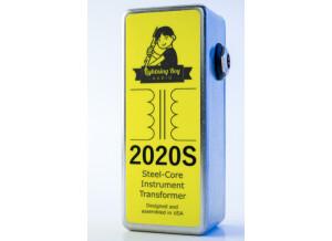Lightning Boy Audio 2020S