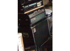 Ampeg SVT-810 Vintage (15034)